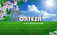 New Forteza products pricelist for 2017